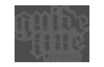 Logo guideline records